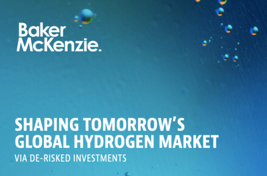 Report: Shaping Tomorrow's Global Hydrogen Market
