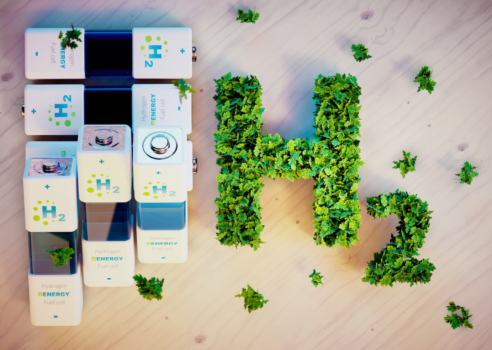 World Energy Council holds online hydrogen workshop