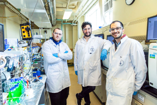 "Researchers develop ""reverse fuel cell"""