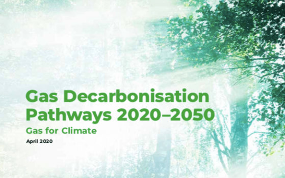 Gas decarbonisation pathways 2020–2050