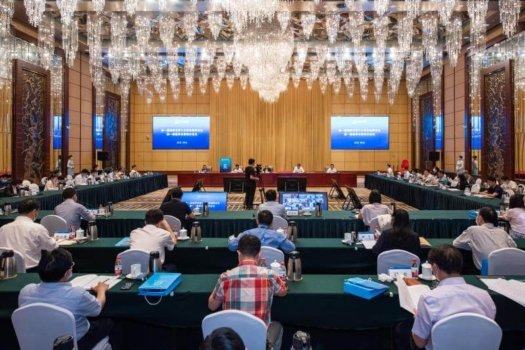 China Hydrogen Alliance and the Hydrogen Council co-release report