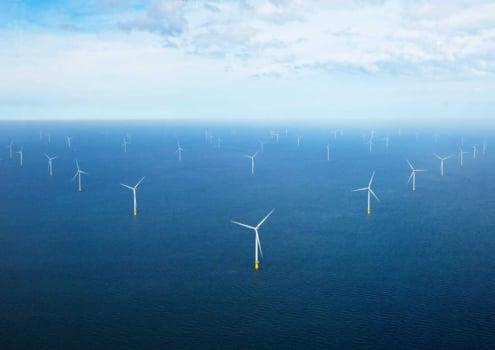 Ørsted, Yara developing 100MW green hydrogen plant in Holland