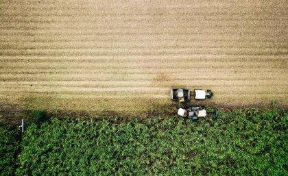 Queensland University investigating producing hydrogen from sugarcane for under $3/kg
