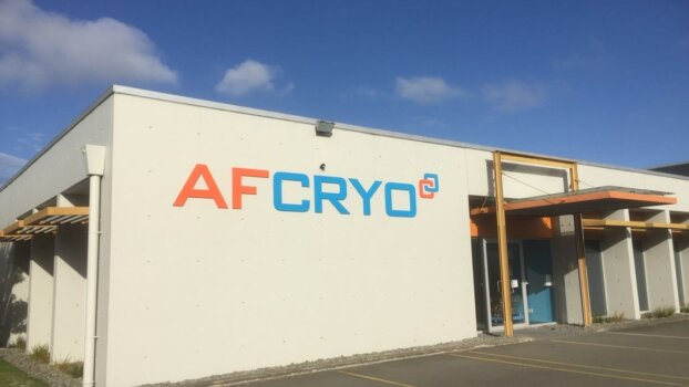 CPH2 and AFCryo are combining technologies to offer cheaper green hydrogen