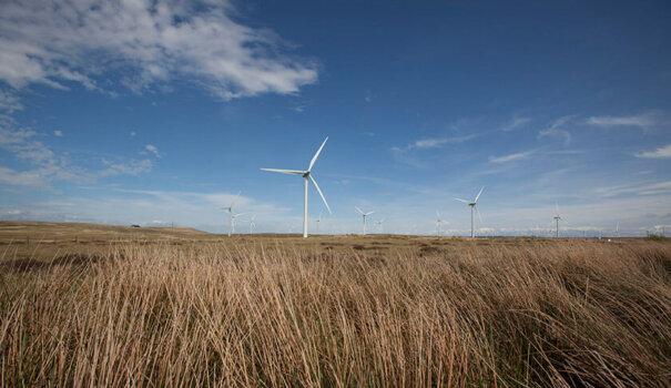 ScottishPower unveils plans for UK's largest electrolyser