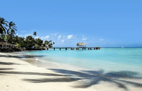 Inside Trinidad and Tobago's green hydrogen economy plans