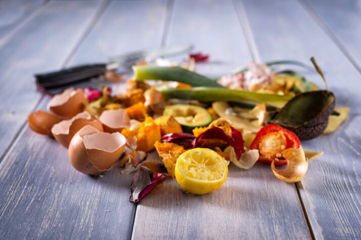 BayoTech, IMBS Group to produce 1,000kg of hydrogen daily from food waste