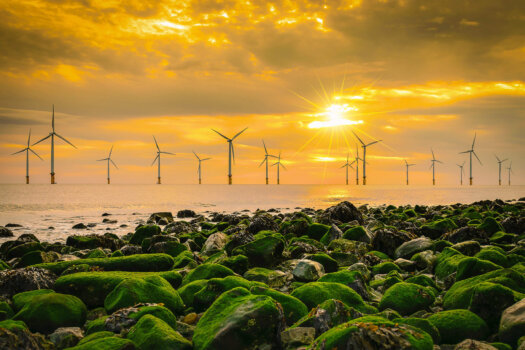 BP, EnBW submit 2.9GW offshore wind lease bid to support green hydrogen production in Scotland