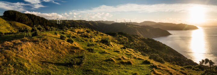 Q&A: New Zealand's hydrogen opportunity and Hiringa Energy's role in it