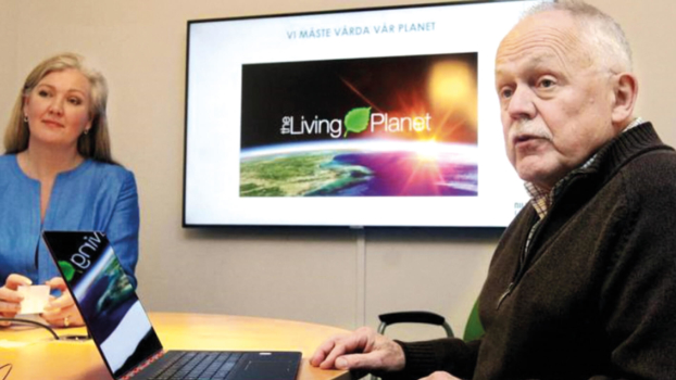 A pioneer who turned passion into business: An interview with Nilsson Energy